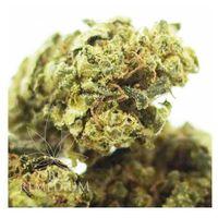 Cbweed susz konopny CBD 11,4% White Widow 2g 2g