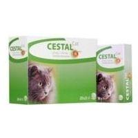 Cestal Cat Flavour tabletki na odrobaczanie kotów 2 sztuki