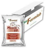 Vetfarmlab Muscle up 480 g - 16 g x 30 sasz. (5907368800929)
