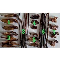 Zestaw 7 rodzajów wysokiej jakości gryzaków naturalnych Balto