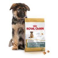 german shepherd junior - 12kg + promocja 4+1 gratis!!! marki Royal canin