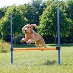 Trixie przeszkoda dla psa 129x115cm, 38225