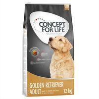 golden retriever adult - 6 kg marki Concept for life