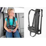 Japan System pasów careva i cross it przy pozycjonowaniu osób niepełnosprawnych w pojazdach, pasy samochodowe dla niepełnosprawnych, zabezpieczenie dla niepełnosprawnego dziecka w samochodzie