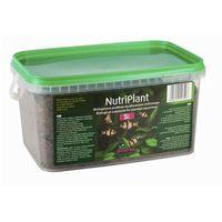 Diversa nutriplant biologiczne podłoże do akwarium 3l/5l