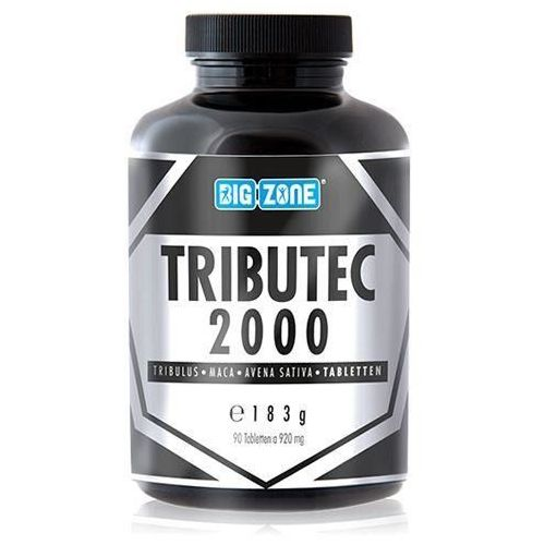 BIG ZONE Tributec 2000 - 90tabs