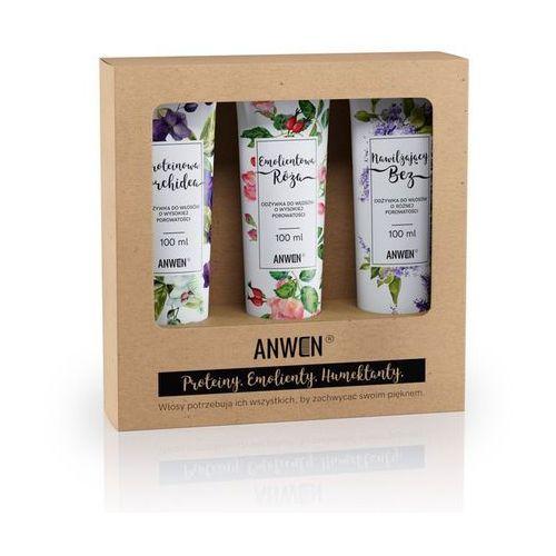 Anwen , zestaw 3 odżywek do wysokiej porowatości (orchidea, róża, bez) (5907222404195)