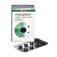 Vetoquinol biowet Phytophale chats® chiens nains 32tabl. środek moczopędny dla kotów i małych psów