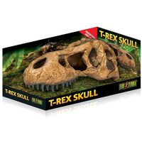 Exo terra Czaszka tyranozaura t-rex