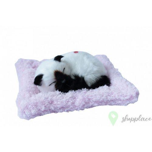 Askato Maskotka interaktywna śpiący kotek biało-czarny na poduszce +darmowa dostawa przy płatności kup z twisto (6901440107103)