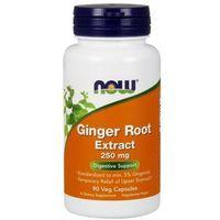Kapsułki Ginger Root (Imbir - Korzeń) Extract 250mg 90 kaps.