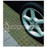 Kiepenkerl Mieszanka traw: 5.1.1 trawnik parkingowy