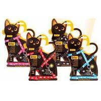 """Dingo komplet """"kicio"""" szelki + smycz dla małych kotów (5904760210172)"""