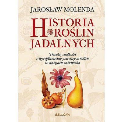 Kuchnia, przepisy kulinarne Bellona MegaKsiazki.pl