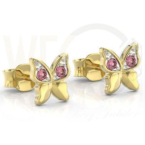 Węc - twój jubiler Kolczyki z żółtego złota z różowymi cyrkoniami bpk-88z-r-c - żółte z rodowaniem