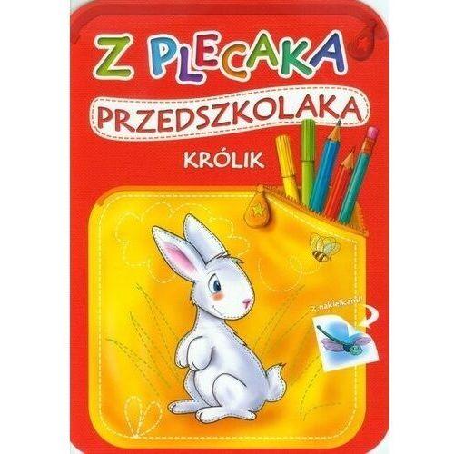 Z plecaka przedszkolaka Królik, Anna Horosin