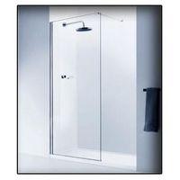 Axiss glass Ścianka prysznicowa  l-1 700mm