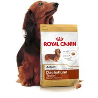dachshund - 7,5kg + promocja 4+1 gratis!!! marki Royal canin