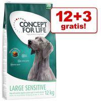 Concept for life Duże opakowanie + 3/1,5 kg gratis! karma dla psa - medium junior, 12 + 3 kg (4260358512624)