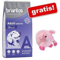 14 kg Briantos karma dla psa + Świnka do masażu dla psa gratis! - Adult, jagnięcina i ryż| Bonus za zamówienie (4260358510774)