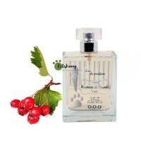 Dog Generation Murmure de Crumble 100ml - perfumy o słodkim zapachu czerwonych jagód, DG-K8440