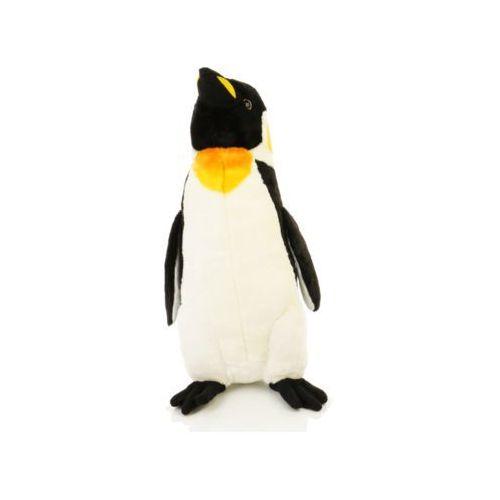 Duży pluszowy pingwin maskotka
