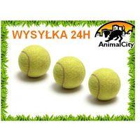 Piłka piłeczka tenisowa dla psa (używana na kortach)