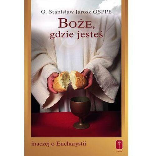 Boże, gdzie jesteś. Inaczej o Eucharystii (9788372569332)