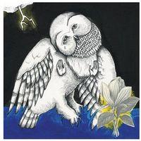 Songs: Ohia - Magnolia Electric Co. (10th Anniversary Deluxe Edition) (0656605030029)
