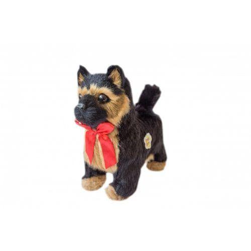 Askato maskotka piesek interaktywny chodzący - wilczur