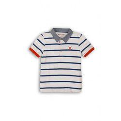 T-shirty dla dzieci  Minoti 5.10.15.