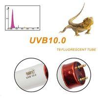 Świetlówka 10.0 T8 LUCKY HERP dla agamy, żółwia
