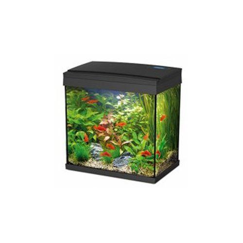 Akwarium 30l Czarne Fm30 Oświetlenie Led Filtr Hailea
