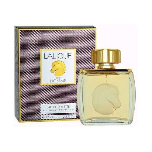 pour homme equus woda perfumowana dla mężczyzn 75 ml + do każdego zamówienia upominek. marki Lalique