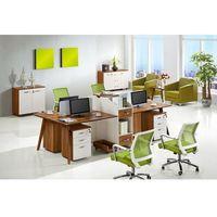 Nowoczesne biurko 4-stanowiskowe EVOLUTIO B305-4, B-305-4