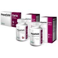 Hepatiale forte large breed 40 tabletek marki Vetexpert