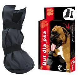 Ubranka dla psów  Chaba KrakVet