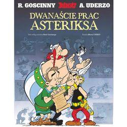 Literatura dla młodzieży  René Goscinny, Albert Uderzo MAXIMALLSHOP