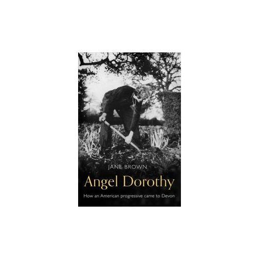Angel Dorothy (9781783523146)