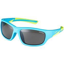 Okulary przeciwsłoneczne dla dzieci  Alpina