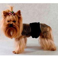 Majtki Pampas dla psa 38-50 cm