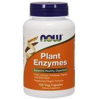 Kapsułki Plant Enzymes 120 kaps