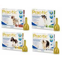 Practic spot-on 3 pipety 137,5 mg/1,1 ml psy 4,5 kg-11 kg marki Novartis