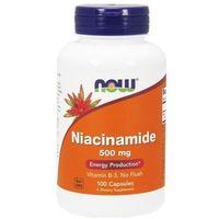 Niacinamide (Amid kwasu nikotynowego) 500mg 100 kaps.