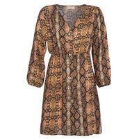 Sukienki krótkie Moony Mood KOUJUK 5% zniżki z kodem CMP9AH. Nie dotyczy produktów partnerskich.