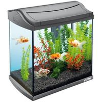 Tetra aquaart led aquarium goldfish 30 l (4004218239852)