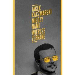 Poezja  Jacek Kaczmarski