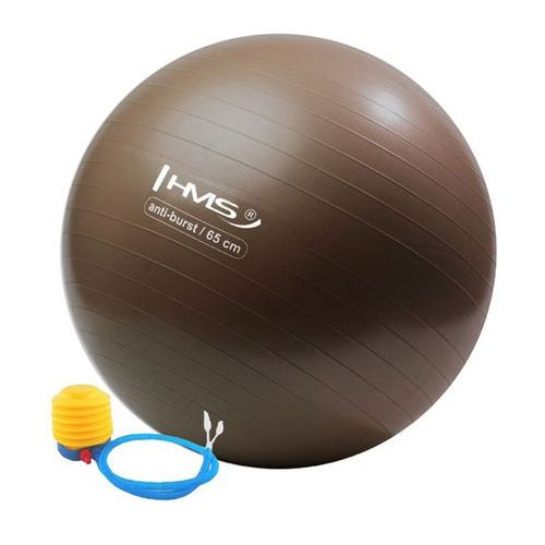 Hms Yb02 65cm anti-burst brązowa grizzly piłka gimnastyczna