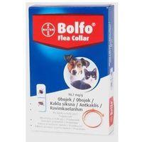 Bolfo obroża przeciw pchłom i kleszczom dla kotów i małych psów 38 cm marki Bayer