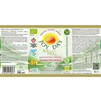 JOY DAY - Mięta - Eko Koncentrat napoju probiotycznego 500 ml